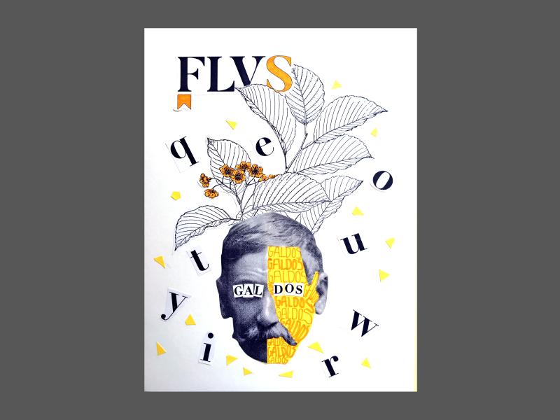 flv18-13